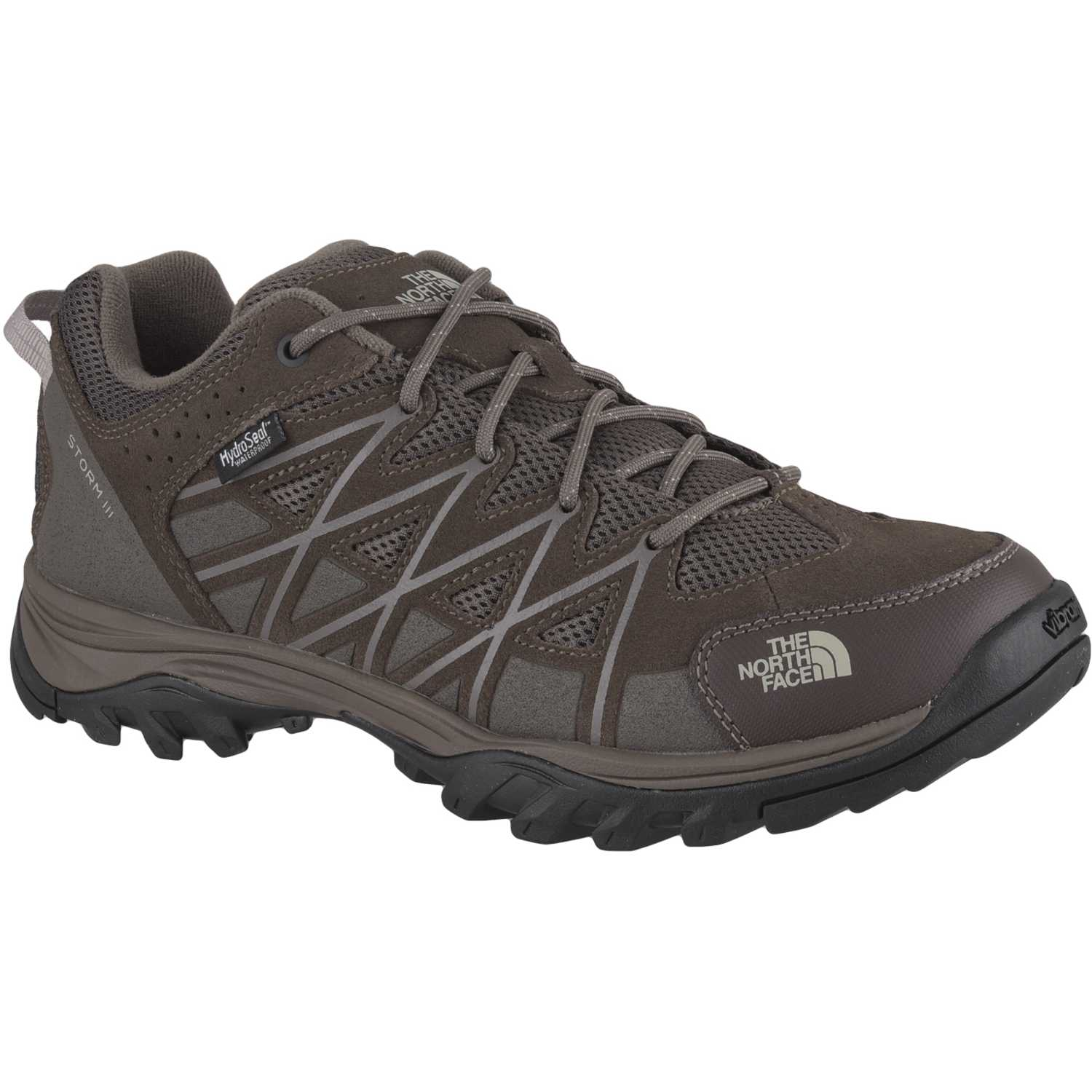 The North Face m storm iii wp MARRON / GRIS Calzado hiking