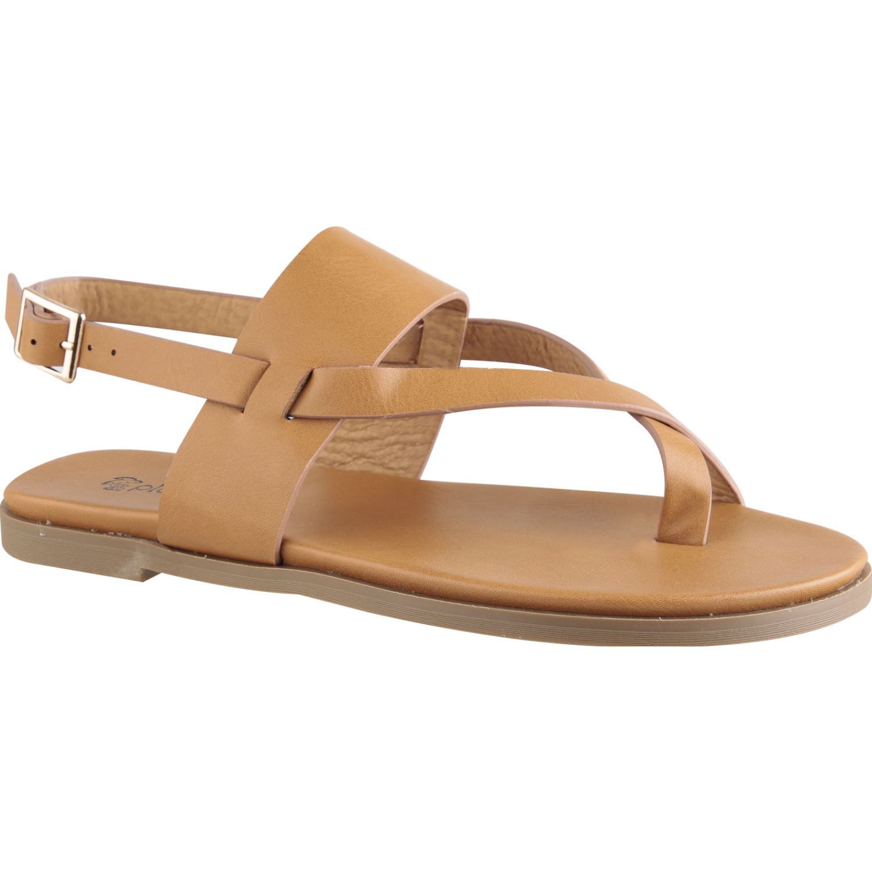 Platanitos sf 8444 Camel Flats