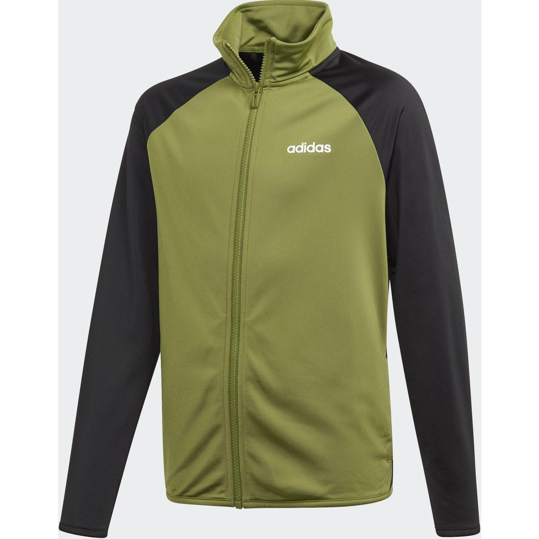 Adidas yb ts entry Negro / verde Buzos Deportivos