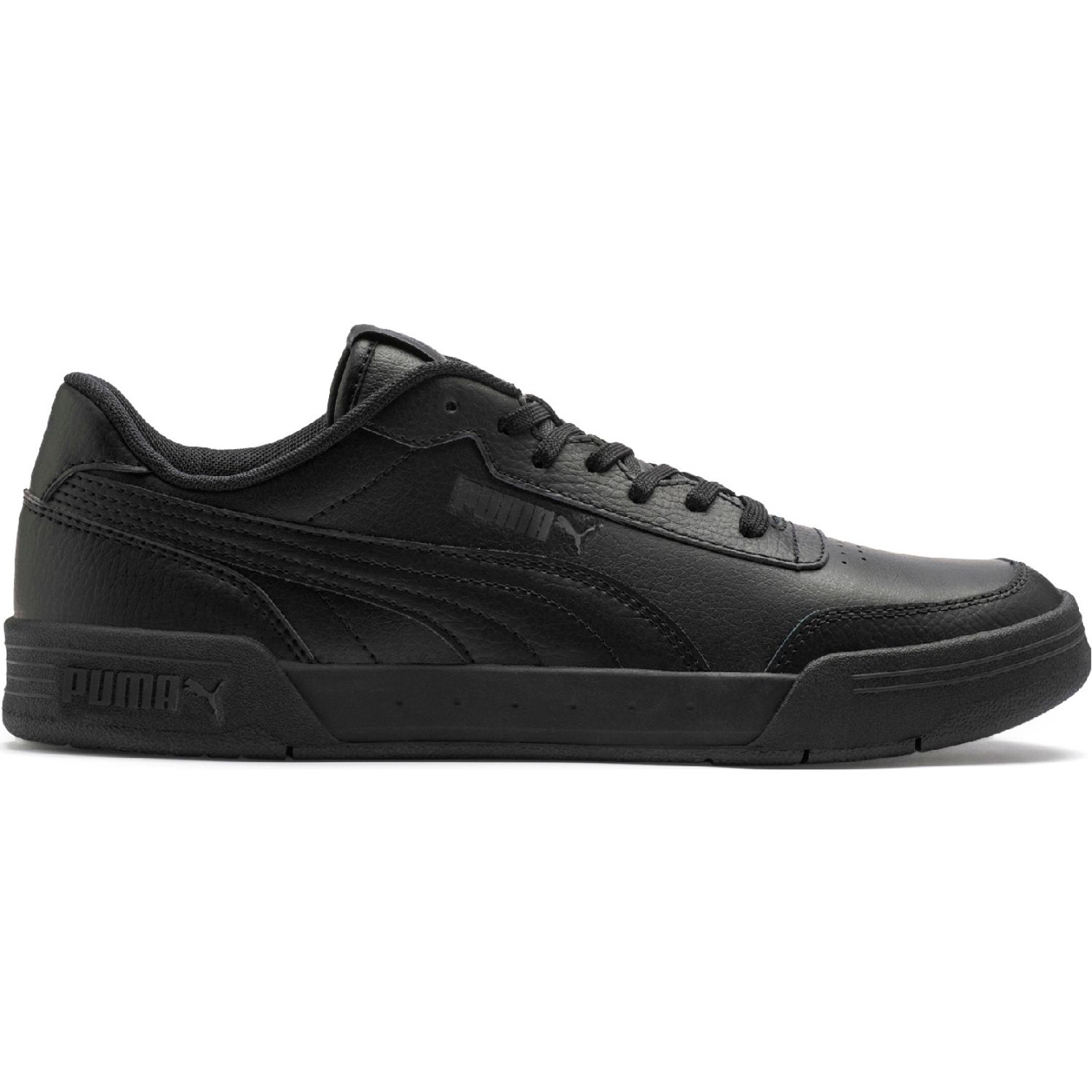 Puma caracal Negro Walking