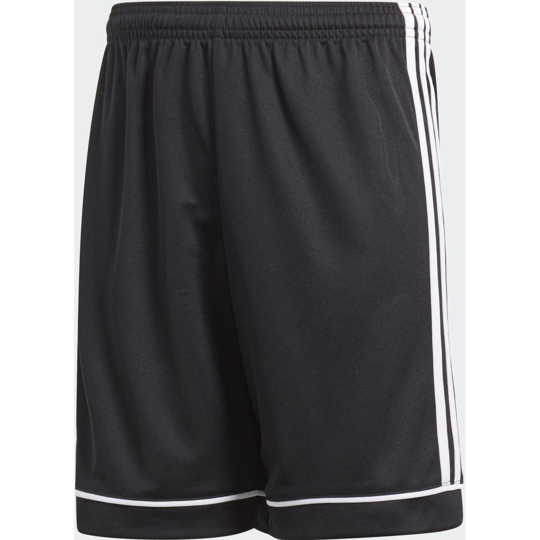 Adidas squad 17 sho  y Negro / blanco Shorts Deportivos