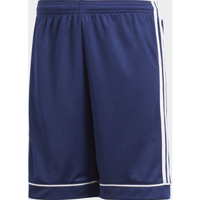 Adidas squad 17 sho  y Azul / blanco Shorts Deportivos