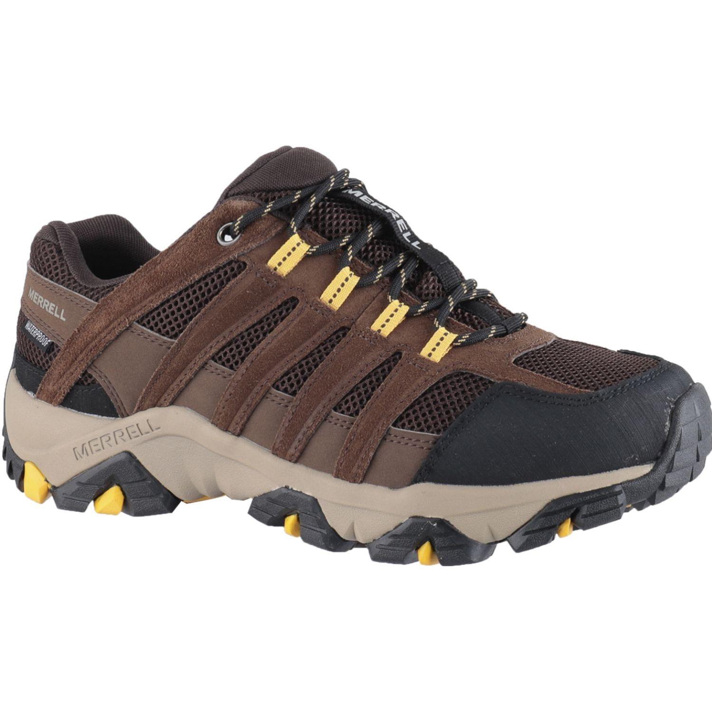 Merrell Dashen Wp (Utah) Marron Zapatos de senderismo