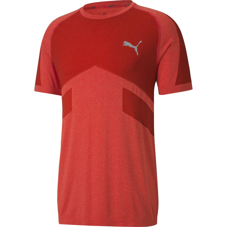 Puma Evostripe Seamless Tee Rojo Camisetas y polos deportivos